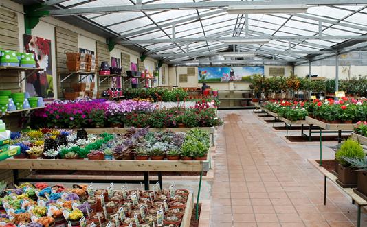 Centro de jardiner a en illescas illescas garden for Centro de jardineria